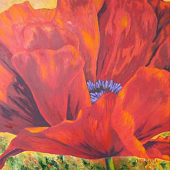 One Red Poppy by Darla Brock