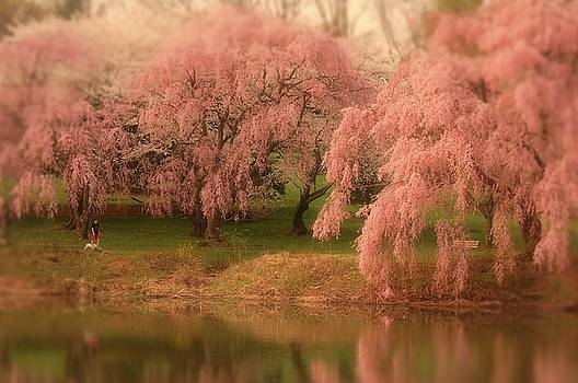 One Spring Day - Holmdel Park by Angie Tirado