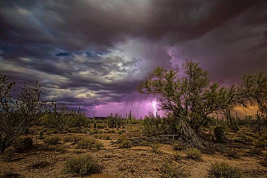 One Stormy Night by Ryan Seek