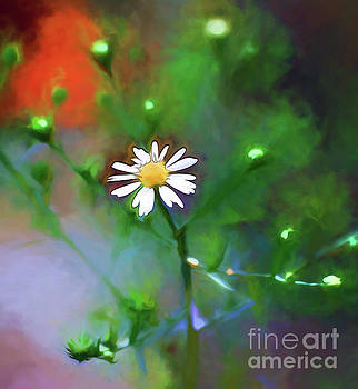 One White Flower by Kerri Farley