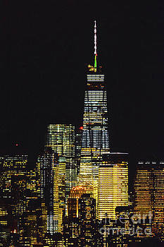 Regina Geoghan - One World Trade Nightlights