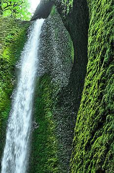 Oneonta Falls  by Ken Aaron