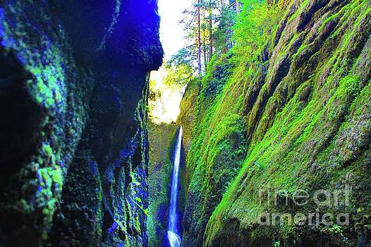 Oneonta Gorge Perspective  by AR Annahita