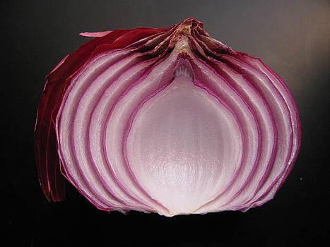 Onion by Lindie Racz