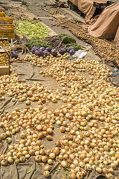 Patricia Hofmeester - Onions on display at a farmer