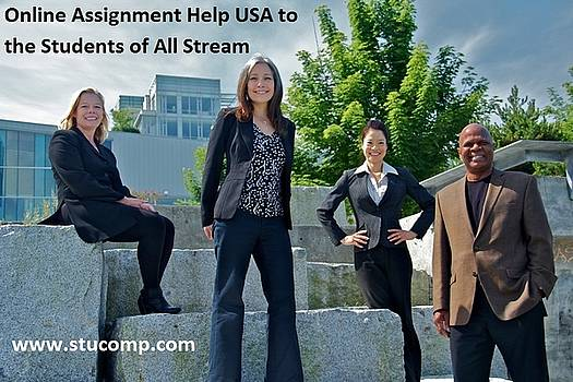 assignment helper usa