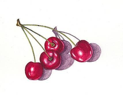 Ontario Cherries by Elizabeth H Tudor