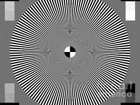 Tina Lavoie - Op Art Color Test Pattern geekery geek stuff