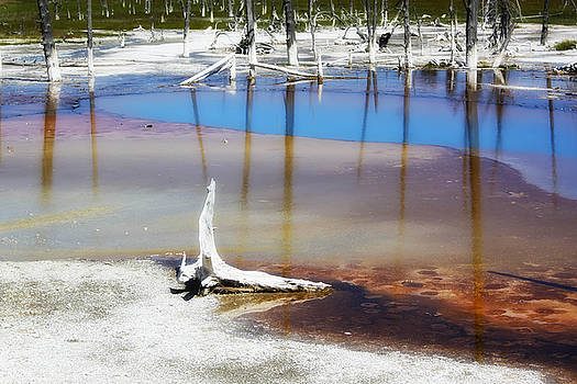 Teresa Zieba - Opalescent Pool Yellowstone NP