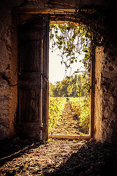 Open Barn Door by Elly De vries