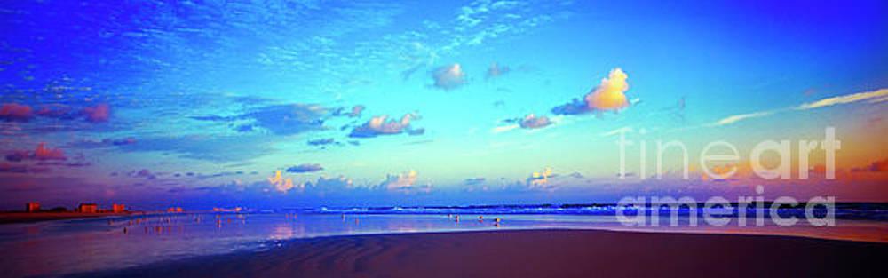 Open Beach Ponce Inlet Atlantic Ocean by Tom Jelen