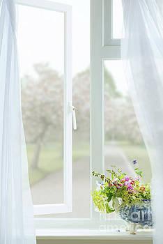 Open Country Window by Amanda Elwell