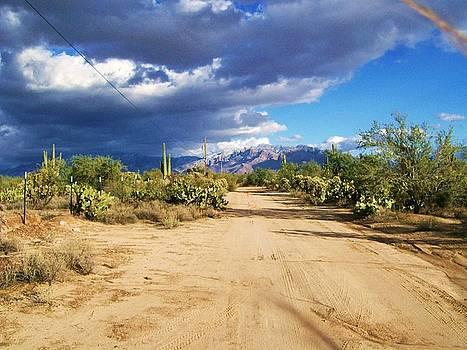 Kathleen Heese - Open Desert Road