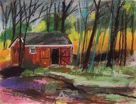 Open Door by John Williams