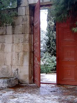 Open Door by Larry Underwood
