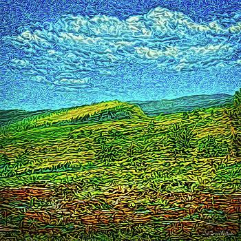 Open Field Dreams by Joel Bruce Wallach