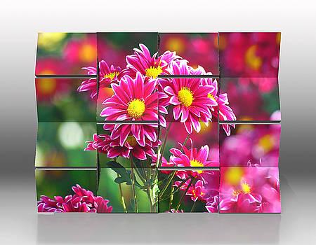 Open Flower Garden by Marvin Blaine