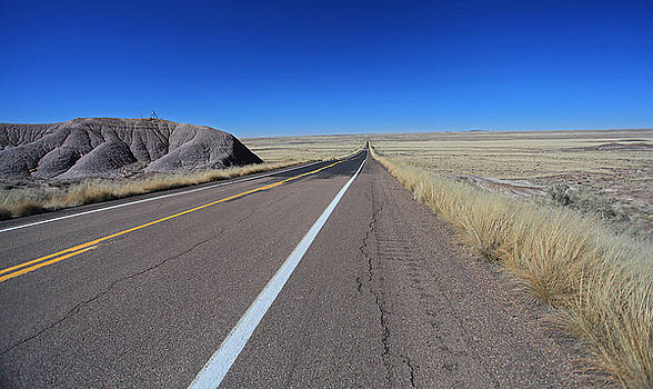 Open Road by Gary Kaylor