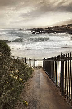 Open To The Sea by Robin-Lee Vieira
