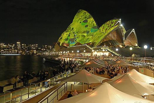 Opera House by David Iori