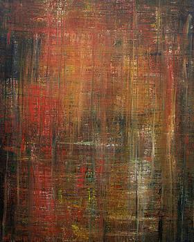 Opt.34.17 Untitled. From the Blaze Series by Derek Kaplan