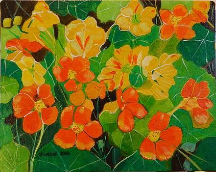 Orange and Yellow Days by Pamela Trueblood