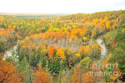 Terri Gostola - The Horseshoe Bend of the High Rollaways in Autumn