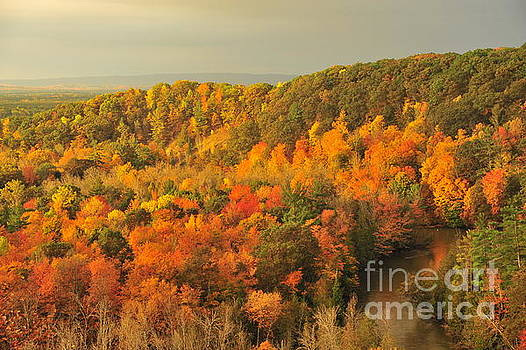Terri Gostola - Orange Autumn at the Manistee River