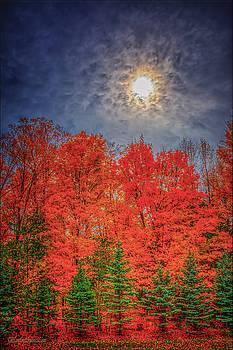 LeeAnn McLaneGoetz McLaneGoetzStudioLLCcom - Orange Blue Green Fall