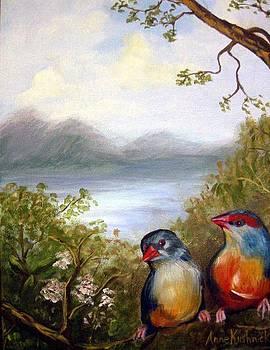 Orange Breasted Waxbills by Anne Kushnick