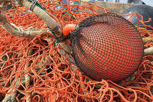 Art Block Collections - Orange Buoy and Nets