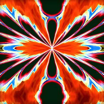 Orange Burst by Susan Leggett