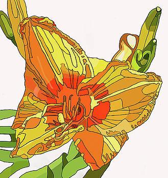 Orange Canna Lily by Jamie Downs