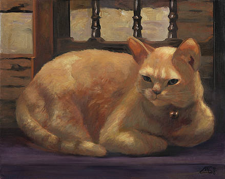 Orange Cat by Mary Gingrich