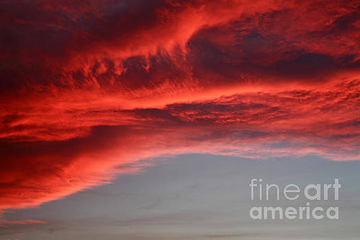 Orange clouds by Deborah Benbrook