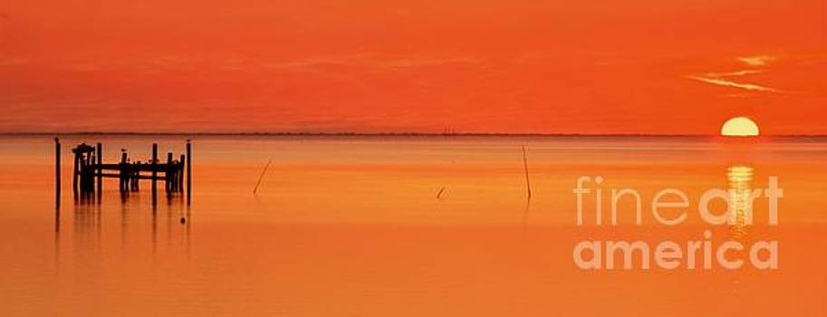 Orange Crush Sunrise by Benanne Stiens