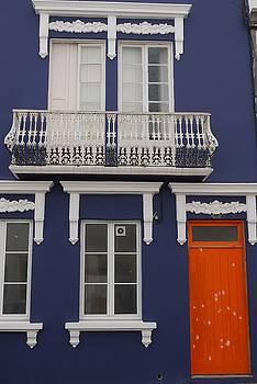 Orange Door on a Blue House by Steffani Cameron