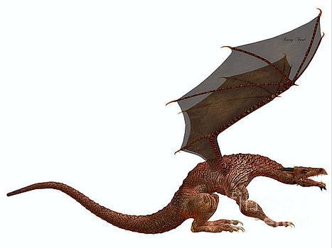 Corey Ford - Orange Dragon