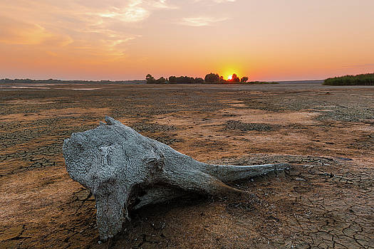 Orange end of a lonely day by Davor Zerjav