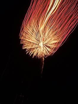 Orange Firework by Michelle Miron-Rebbe