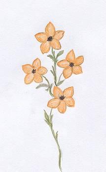 Orange Florals by Christine Corretti