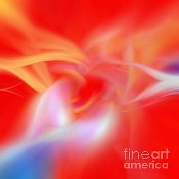 Orange Flower Abstract Design by Phill Petrovic