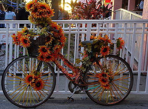Orange Flower Bike by Laurie Perry