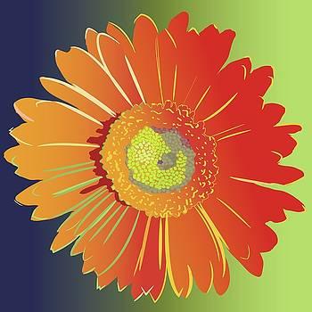 Orange Gerbera Daisy by Marian Federspiel