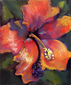 Orange Hibiscus by Cheryl Yellowhawk