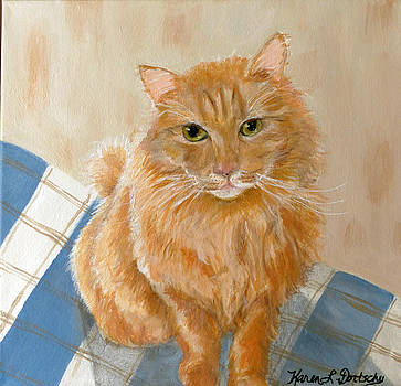 Filou the Orange Long Haired Cat by Karen Dortschy