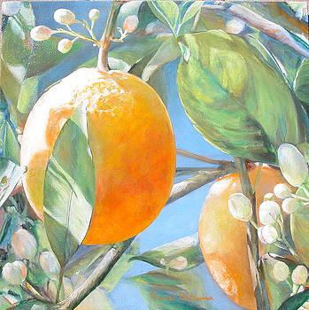 Orange by Muriel Dolemieux