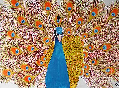 Orange peacock by Dawn Plyler