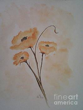 Orange Poppies by Ginny Youngblood