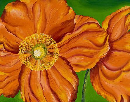 Orange Poppies by Sweta Prasad
